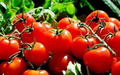 Comment traiter l'acné et les boutons avec la tomate ?